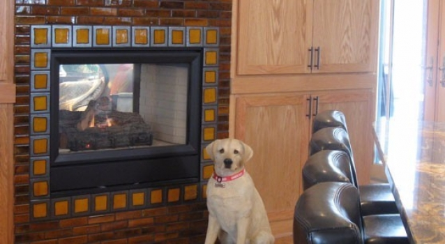 <h5>Fireplace</h5>